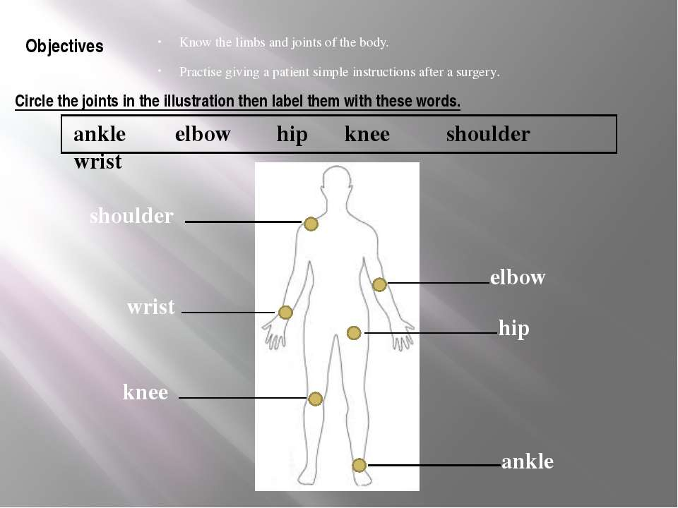 Circle the joints in the illustration then label them with these words. Know ...