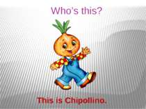 Who's this? This is Chipollino.