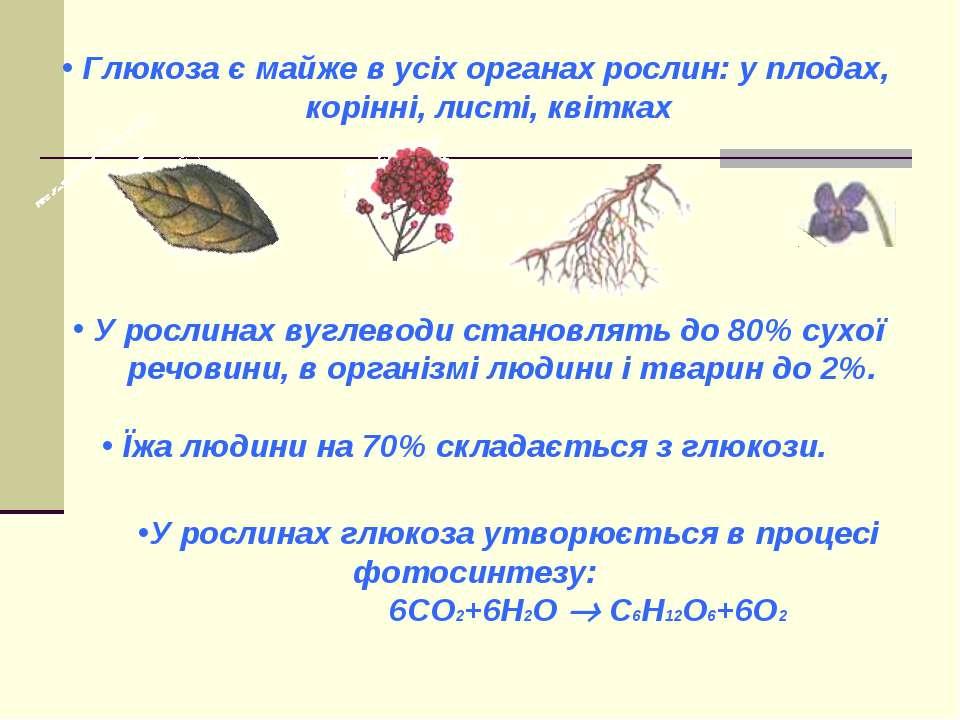 Глюкоза є майже в усіх органах рослин: у плодах, корінні, листі, квітках У ро...