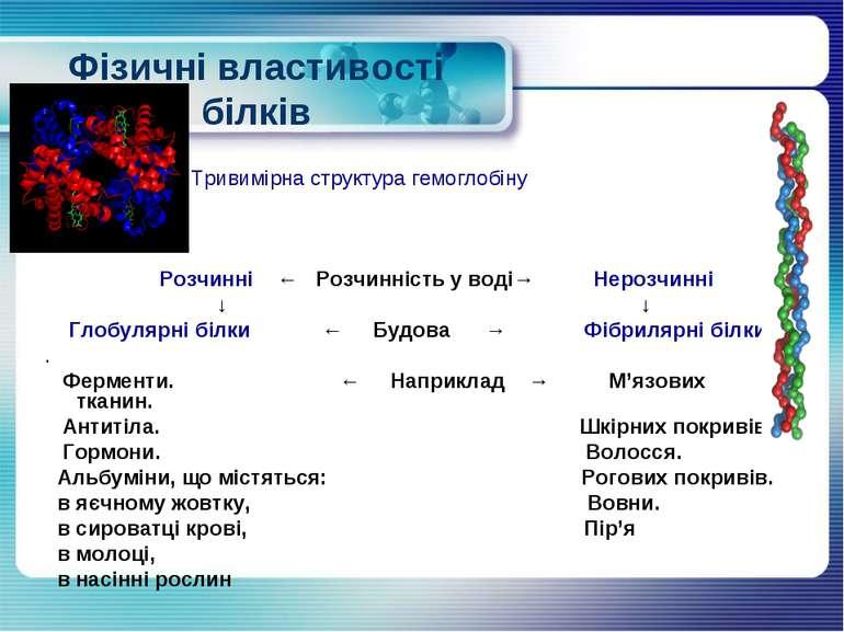 Фізичні властивості білків Розчинні ← Розчинність у воді→ Нерозчинні ↓ ↓ Глоб...
