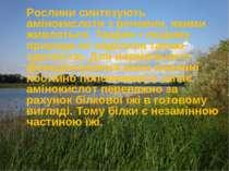 Рослини синтезують амінокислоти з речовин, якими живляться. Тварин і людину п...