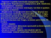 Паразит: Lamblia intestinalis (відкритий у 1859 професором Харківського уніве...