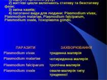 ККлас Sporozoa: 1) відсутні органели руху; 2) життєві цикли включають статеву...