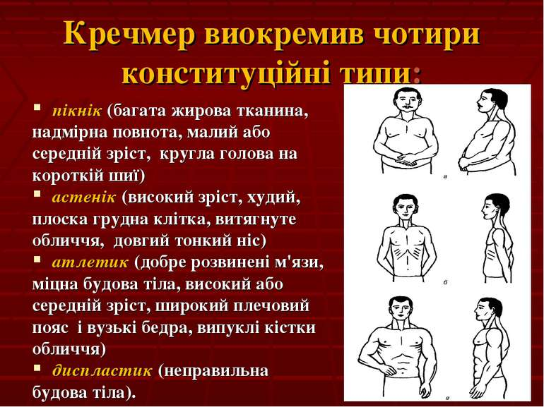 Кречмер виокремив чотири конституційні типи: пікнік (багата жирова тканина, н...