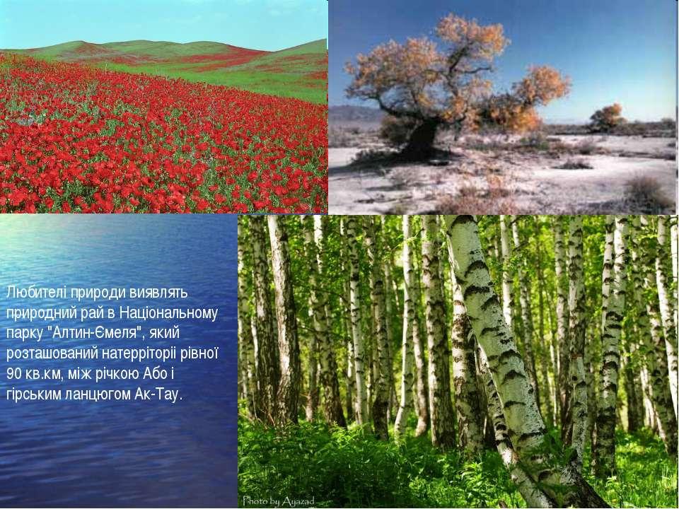 """Любителі природи виявлять природний рай в Національному парку """"Алтин-Ємеля"""", ..."""