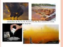 Особливо великим є внесення людством в біосферу таких елементів, як Na, Cl, F...