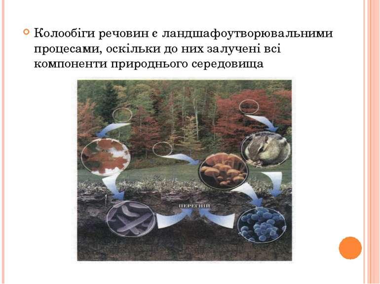 Колообіги речовин є ландшафоутворювальними процесами, оскільки до них залучен...