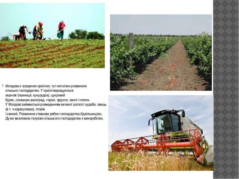 Молдоває аграрною країною,тутнепоганорозвинене сільськегосподарство.У к...
