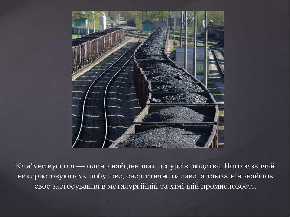 Кам'яне вугілля — один з найцінніших ресурсів людства. Його зазвичай використ...