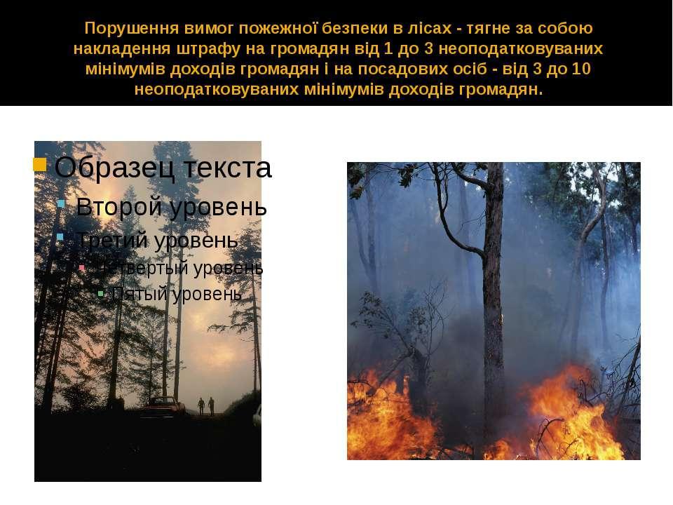 Порушення вимог пожежної безпеки в лісах - тягне за собою накладення штрафу н...