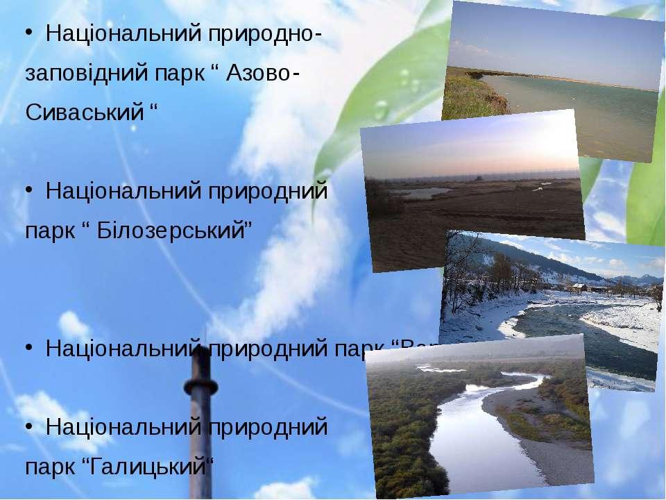 """Національний природно- заповідний парк """" Азово- Сиваський """" Національний прир..."""