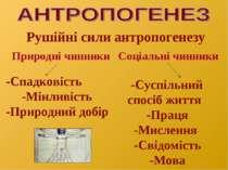 Рушійні сили антропогенезу Природні чинники Соціальні чинники -Спадковість -М...