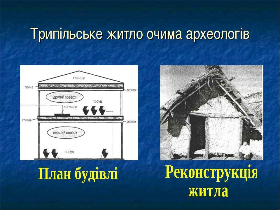 Трипільське житло очима археологів