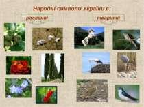 Народні символи України є: рослинні тваринні