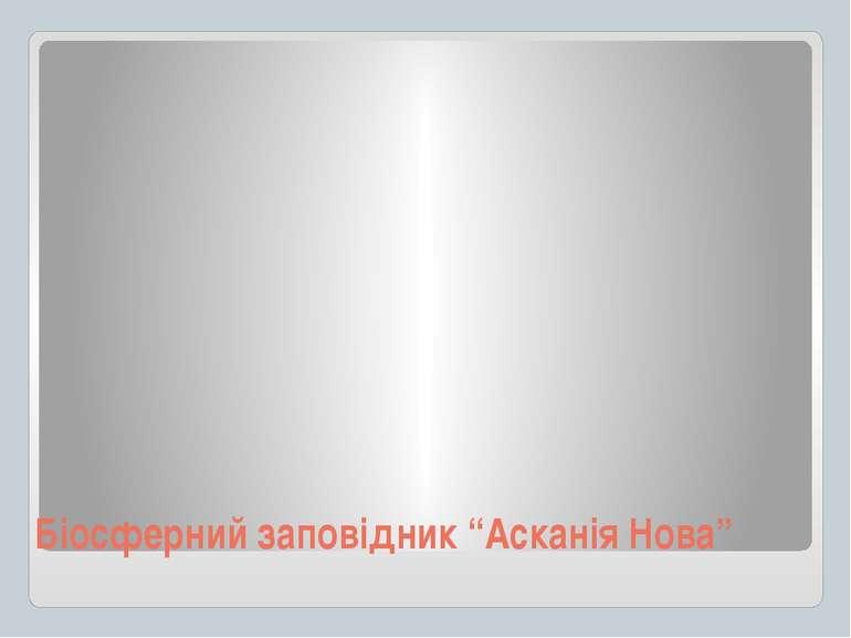 """Біосферний заповідник """"Асканія Нова"""""""