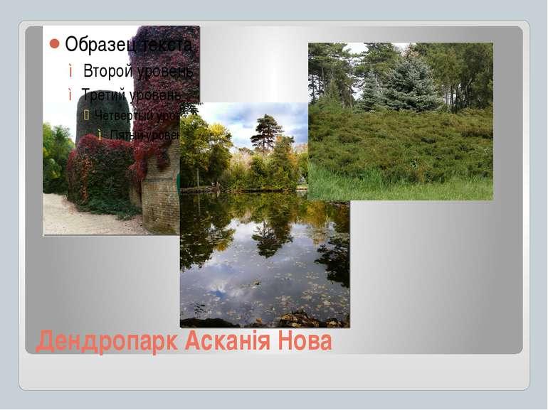 Дендропарк Асканія Нова