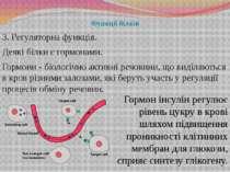 Функції білків 3. Регуляторна функція. Деякі білки є гормонами. Гормони - біо...