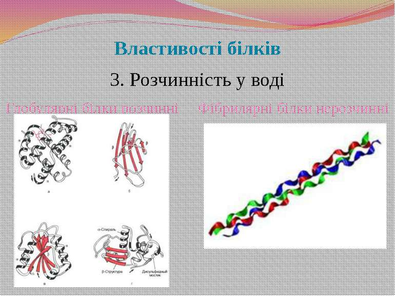 Властивості білків 3. Розчинність у воді Глобулярні білки розчинні Фібрилярні...