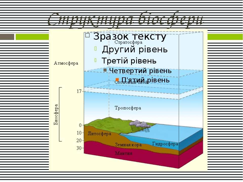 Структура біосфери