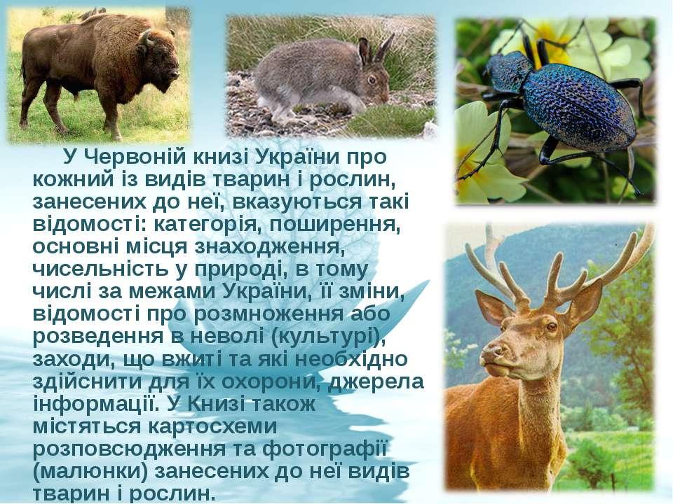 У Червоній книзі України про кожний із видів тварин і рослин, занесених до не...