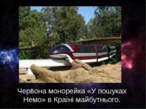 Червона монорейка «У пошуках Немо» в Країні майбутнього.