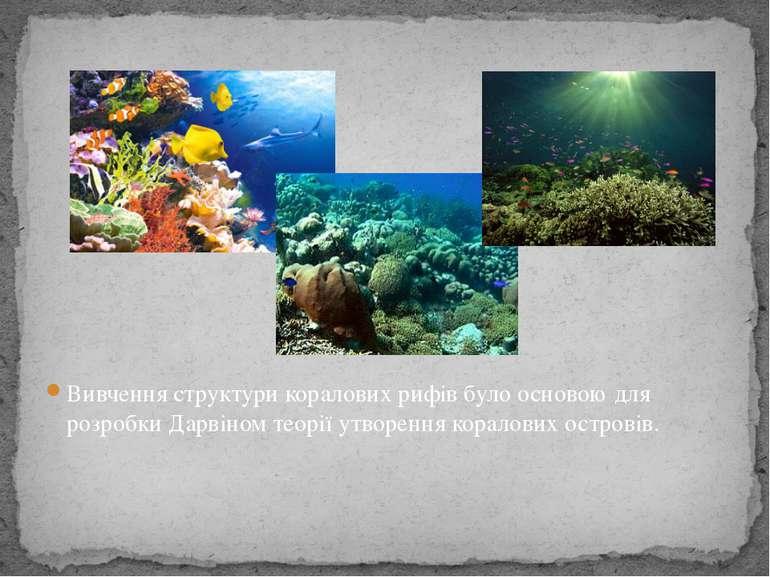 Вивчення структури коралових рифів було основою для розробки Дарвіном теорії ...