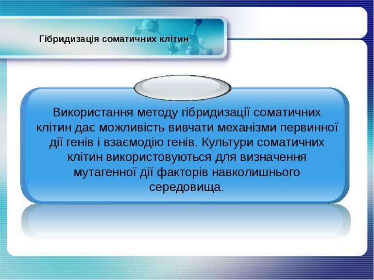Гібридизація соматичних клітин Використання методу гібридизації соматичних кл...