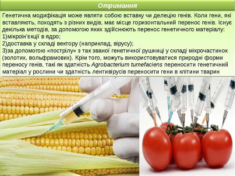 Генетична модифікація може являти собою вставку чи делецію генів. Коли гени, ...