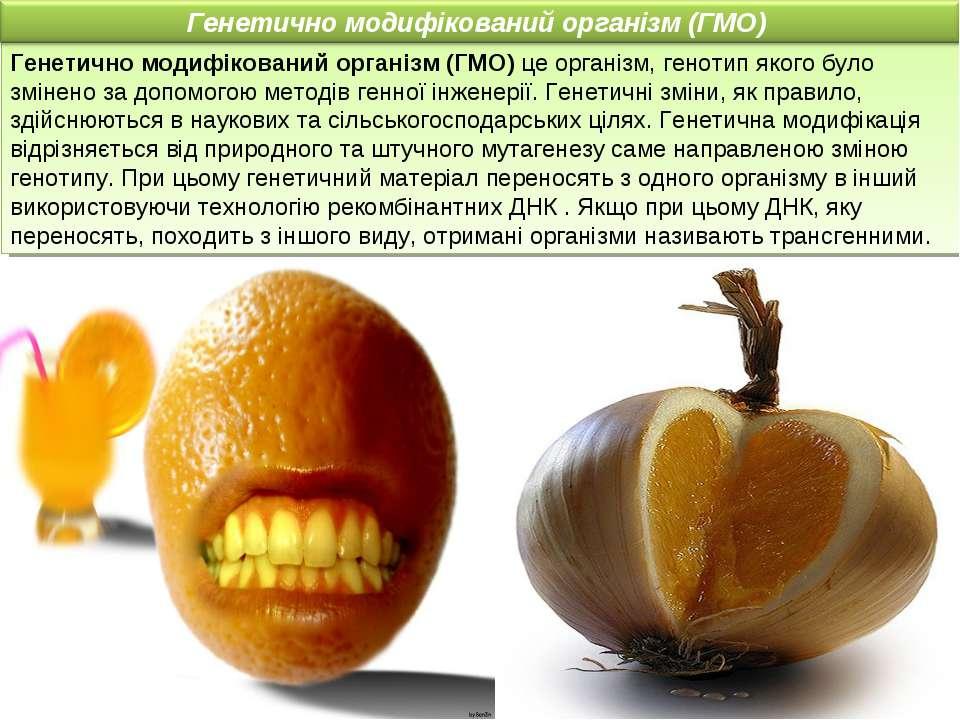 Генетично модифікований організм (ГМO) це організм, генотип якого було змінен...