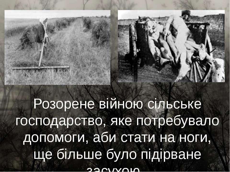 Розорене війною сільське господарство, яке потребувало допомоги, аби стати на...