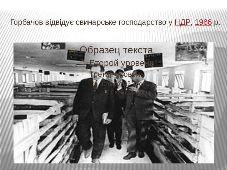 Горбачов відвідує свинарське господарство уНДР,1966р.