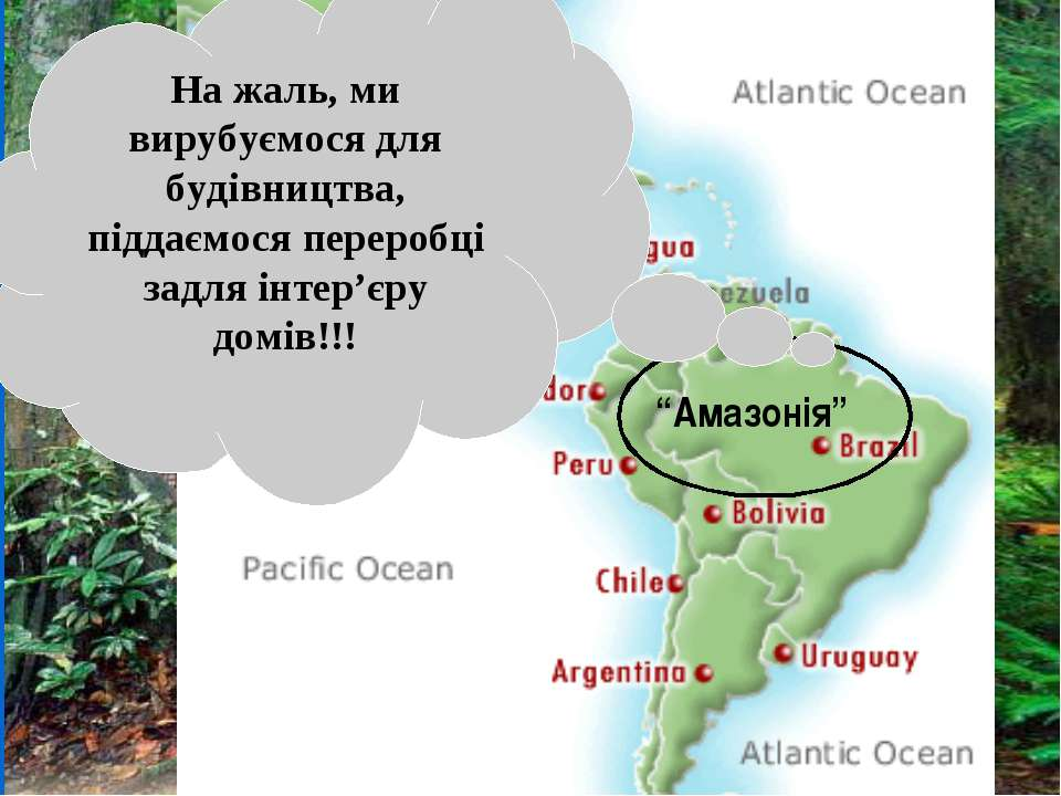 http://www.ran.org/info_center/about_rainforests.html Тропічні ліси: Коста-Рі...