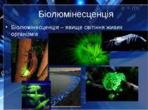 Біолюмінесценція Біолюмінесценція – явище світіння живих організмів