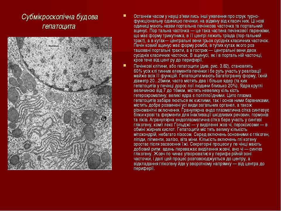 Субмікроскопічна будова гепатоцита Останнім часом у науці з'яви лись інші уяв...