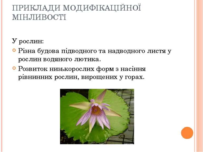 ПРИКЛАДИ МОДИФІКАЦІЙНОЇ МІНЛИВОСТІ У рослин: Різна будова підводного та надво...