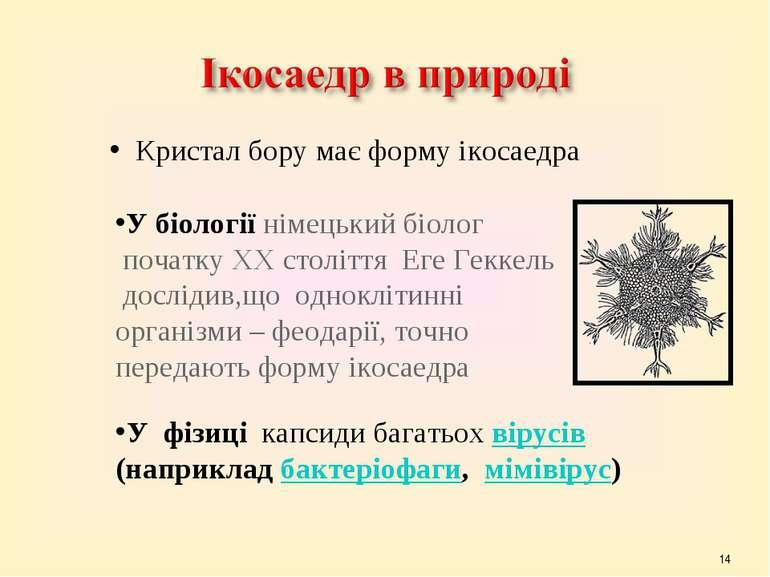 * Кристал бору має форму ікосаедра У біології німецький біолог початку ХХ сто...