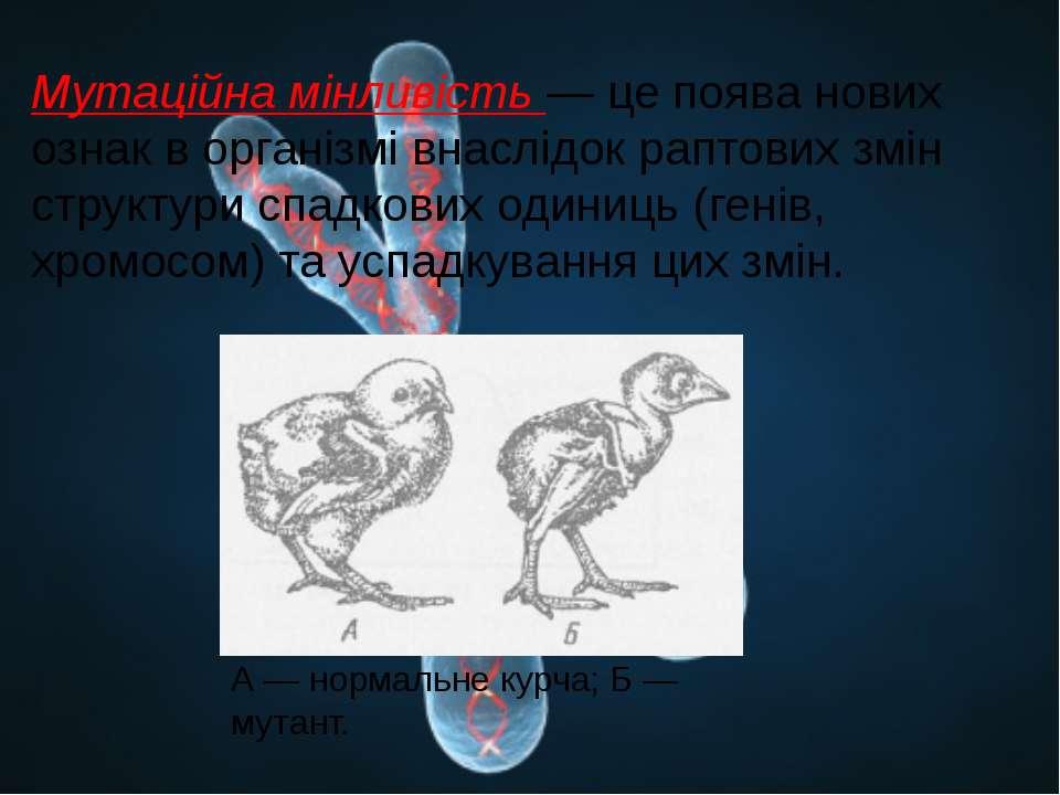 Мутаційна мінливість — це поява нових ознак в організмі внаслідок раптових зм...