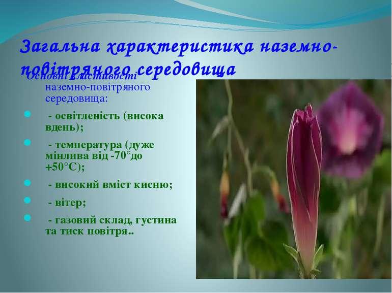 Загальна характеристика наземно-повітряного середовища Основні властивості на...