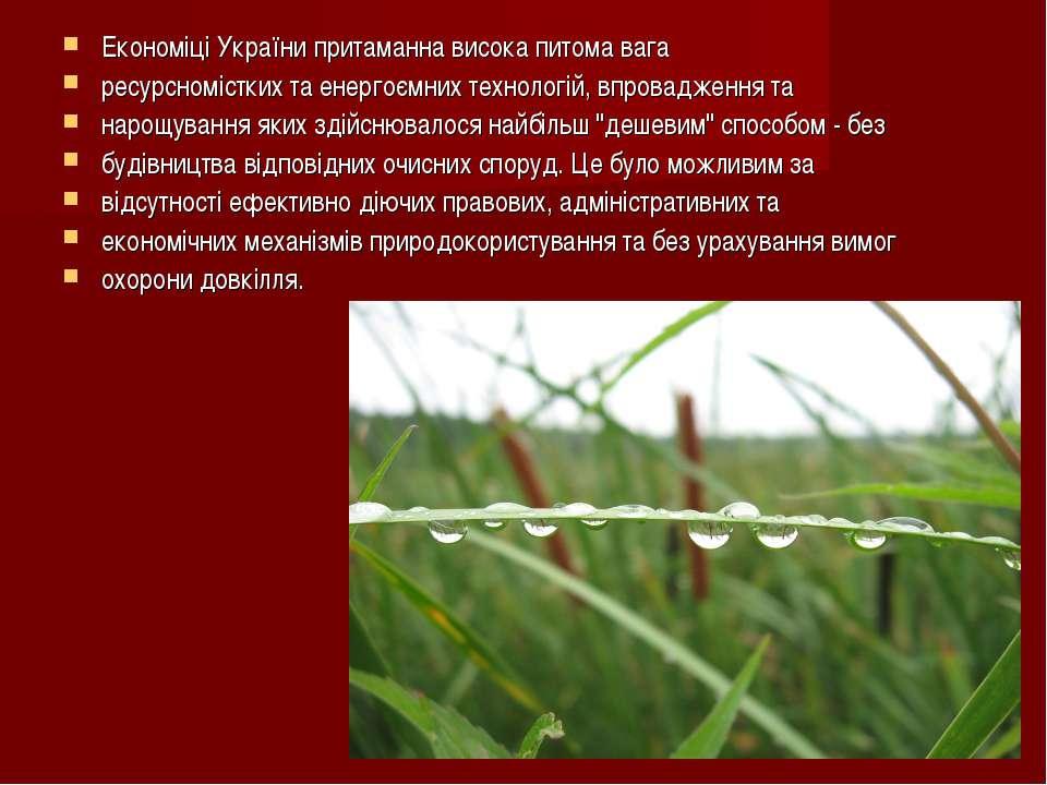Економіці України притаманна висока питома вага ресурсномістких та енергоємни...