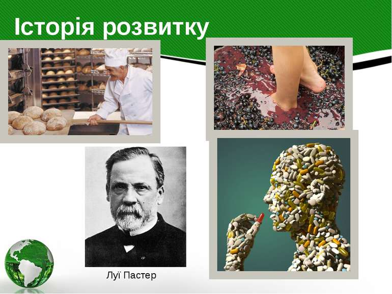 Історія розвитку Луї Пастер Історія біотехнології З найдавніших часів людина ...