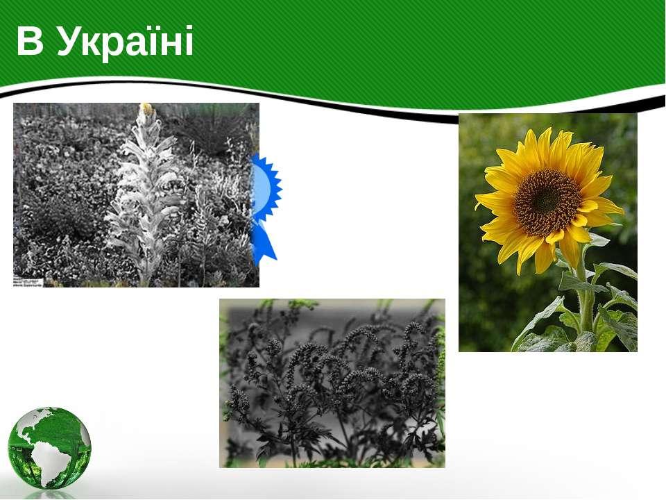 В Україні В Україні біологічний захист рослин застосовується проти паразитичн...