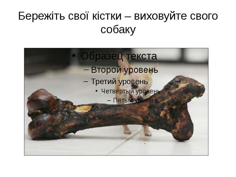Бережіть свої кістки – виховуйте свого собаку