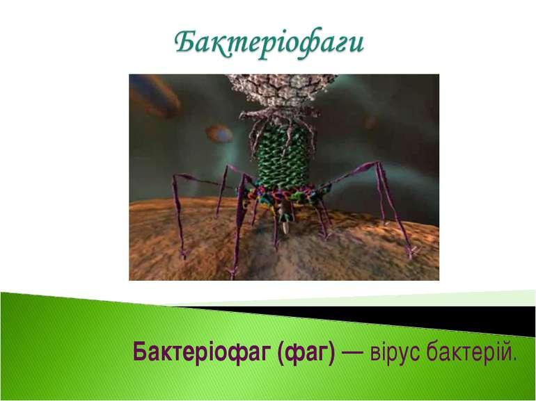 Бактеріофаг (фаг) — вірус бактерій.