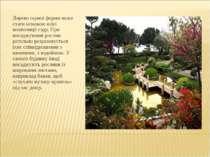 Дерево гарної форми може стати основою всієї композиції саду. При висаджуванн...