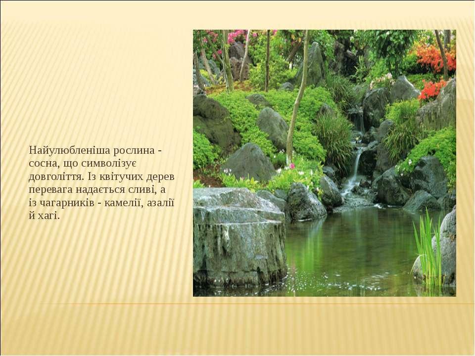 Найулюбленіша рослина - сосна, що символізує довголіття. Із квітучих дерев пе...