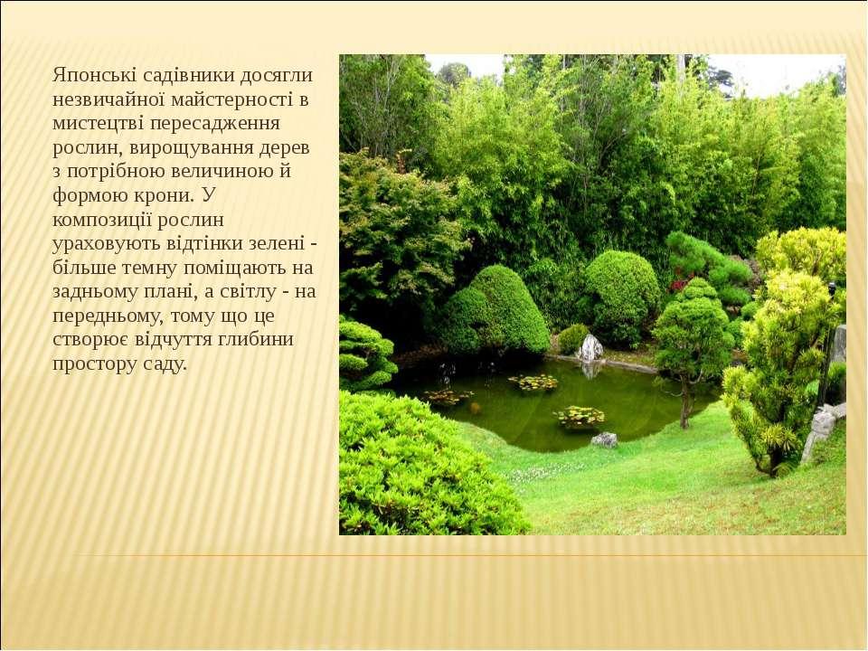 Японські садівники досягли незвичайної майстерності в мистецтві пересадження ...