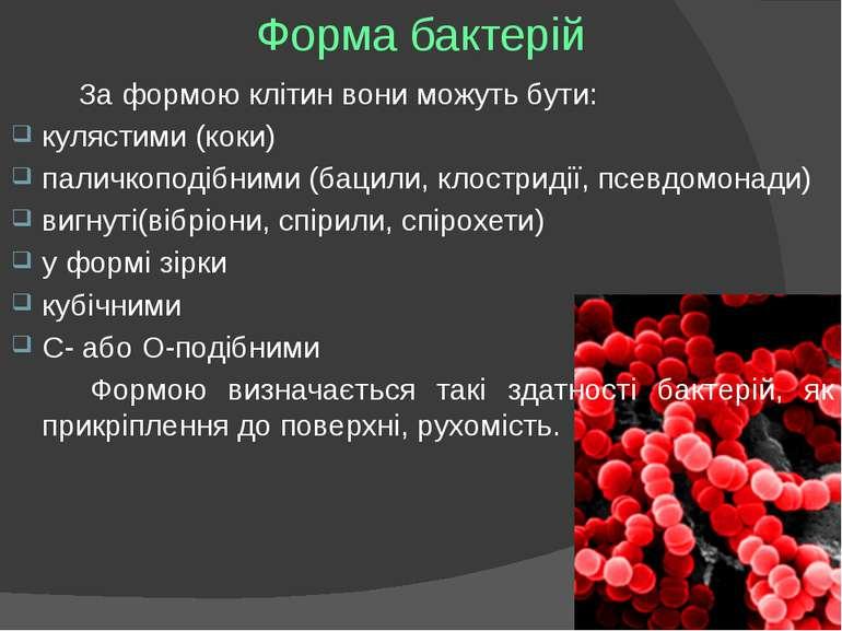 Форма бактерій За формою клітин вони можуть бути: кулястими (коки) паличкопод...