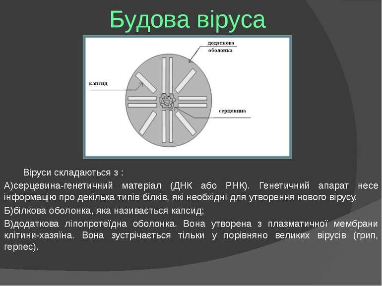 Будова віруса Віруси складаються з : А)серцевина-генетичний матеріал (ДНК або...