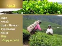 Індія Китай Шрі – Ланка Туреччина Кенія 75% збору в світі