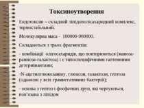 Токсиноутворення Ендотоксин – складний ліпідополісахаридний комплекс, термост...